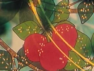 La Biosphère II : L'Alimentation