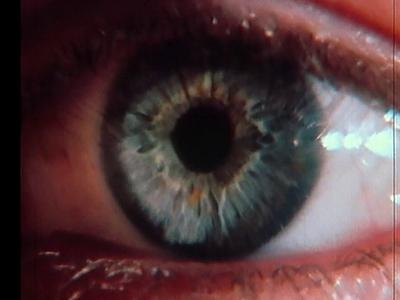 Le Devoir de voir I : Voir à travers l'œil