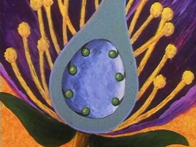 La Vie des plantes à fleurs III : De la fleur au fruit