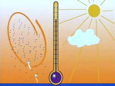Des climats, pourquoi ? IV : Les Précipitations