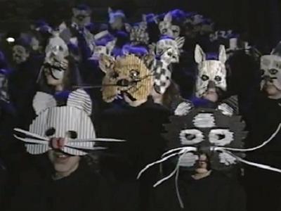 L'École primaire du Mail monte un opéra : le Paradis des chats