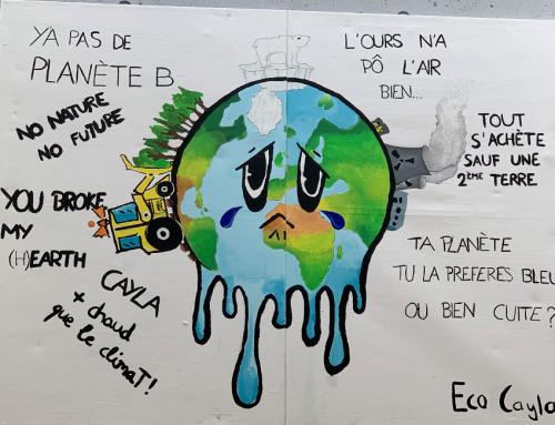 Création d'une commission «Eco-Cayla» sur initiative des élèves
