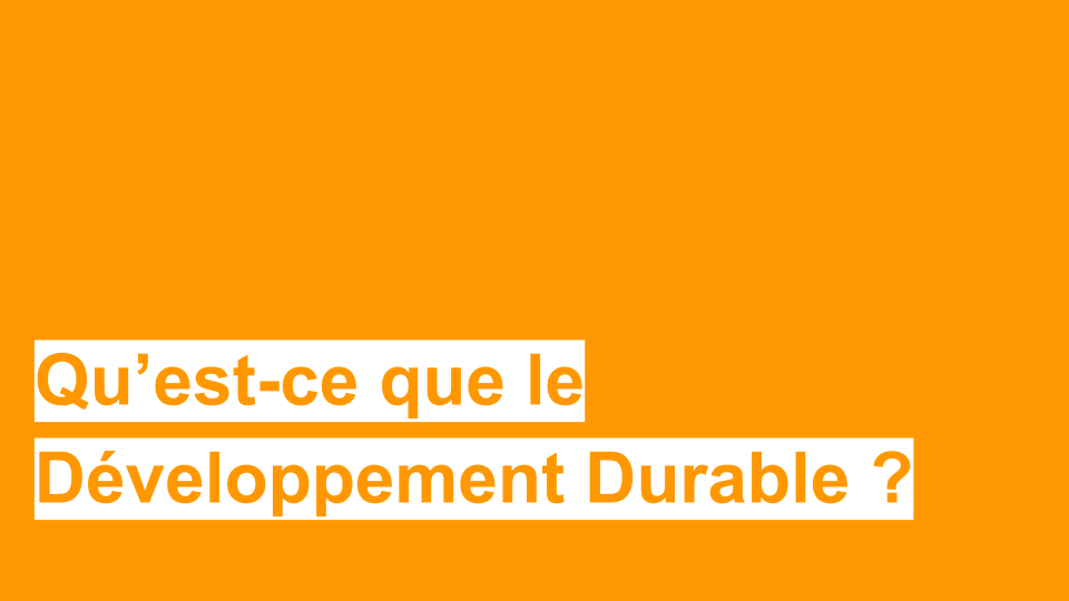 Comment définir l'éducation au développement durable ? - DIP21