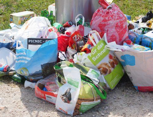 LET 's TALK ABOUT PLASTIC: Projet Erasmus au CO de Budé