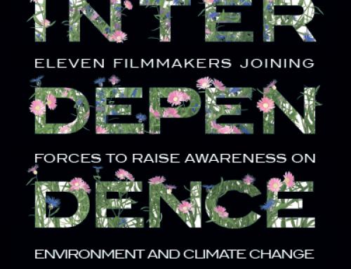 Film «Interdependence»: le cinéma et l'art s'unissent pour sensibiliser à l'environnement