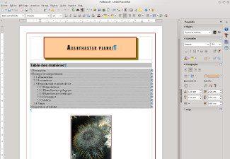 Traitement de texte et tableur : utiliser les styles / SEM-10204