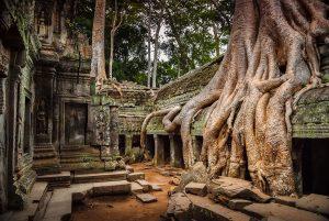 A_cambodge-84