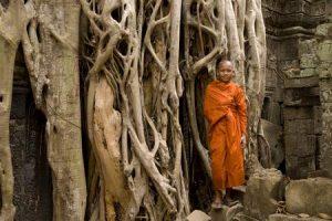 A_cambogia3